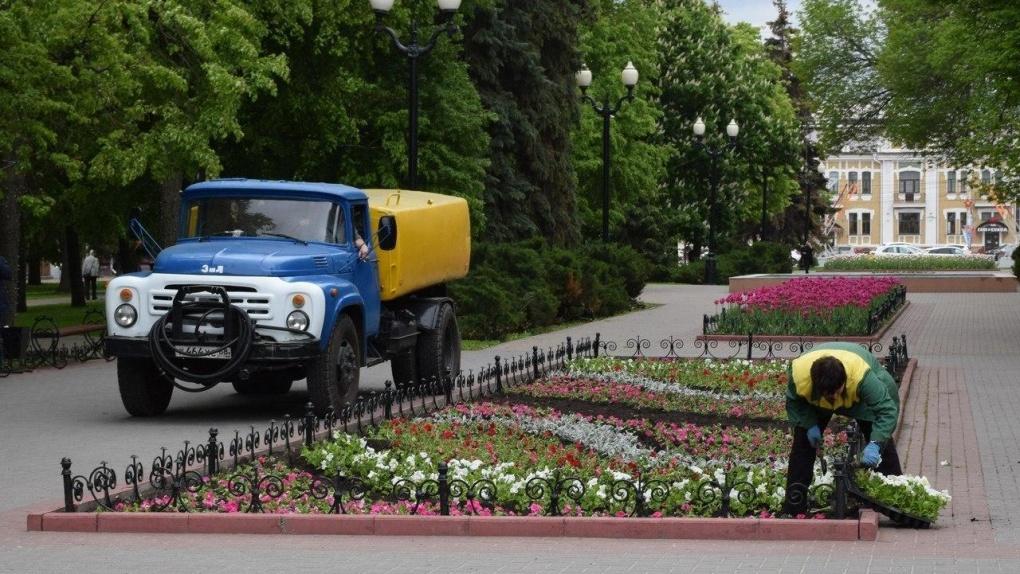 К юбилею Тамбова на улицах города появятся около 4 миллионов цветов