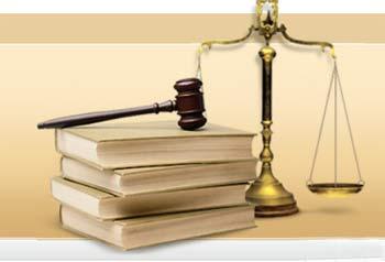 Директора тамбовского зоопарка осудили на 2 года условно