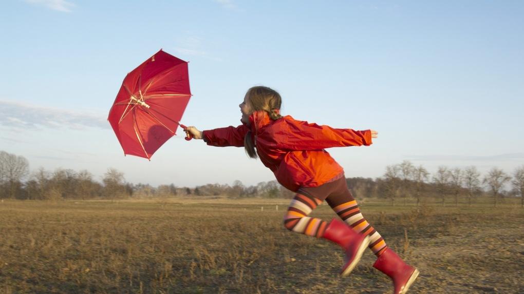 Экстренное предупреждение: завтра в Тамбовской области ожидается сильный ветер