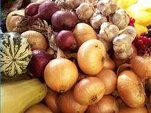Сезонные продукты на Тамбовщине упали в цене