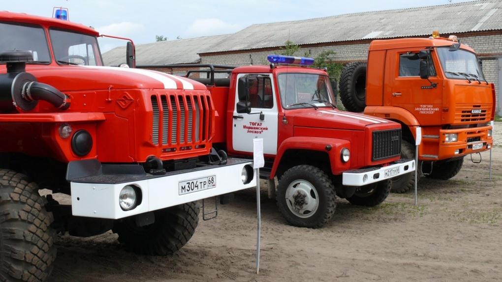 В Тамбовской области установили особый противопожарный режим
